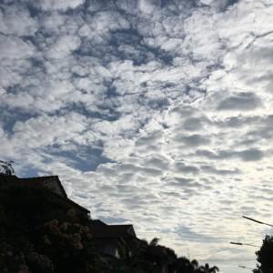 タイで大気汚染PM2.5の話題。雨が降らない乾季。心配無用、既に手を打っている。