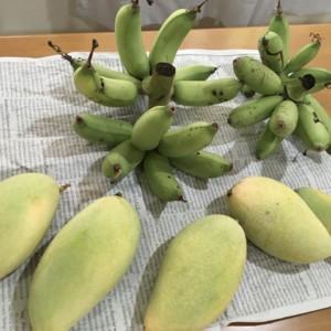 タイで免疫力を高める食生活と抗酸化生活の毎日。